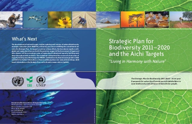 "Strategic Plan for  Biodiversity 2011–2020  and the Aichi Targets  ""Living in Harmony with Nature""  What's Next  The devel..."