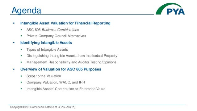 valuation of intellectual property and intangible assets pdf
