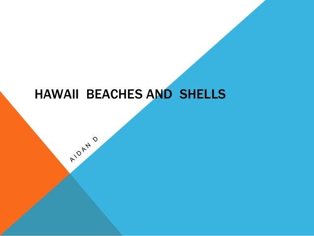 HAWAII BEACHES AND SHELLS