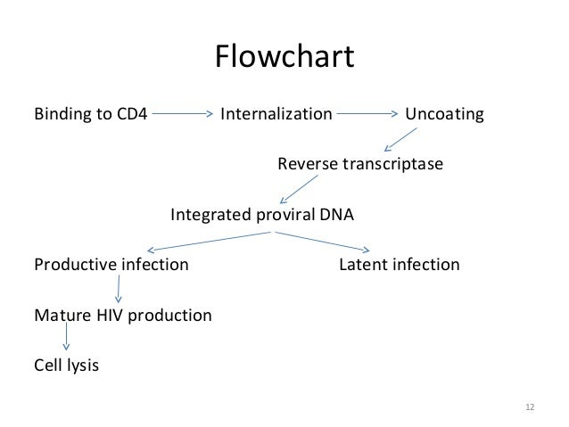 Modes of HIV Transmission