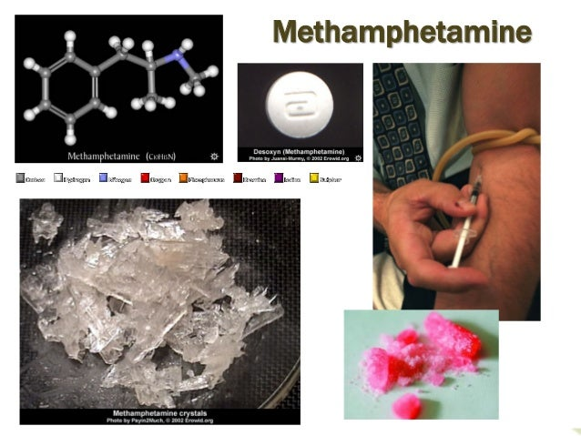 Genetic Differences in Vulnerability to Methamphetamine