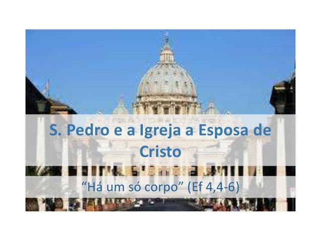 "S. Pedro e a Igreja a Esposa de             Cristo    ""Há um só corpo"" (Ef 4,4-6)"