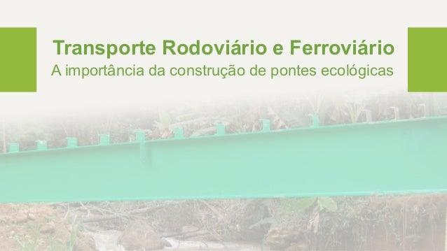 Transporte Rodoviário e Ferroviário A importância da construção de pontes ecológicas