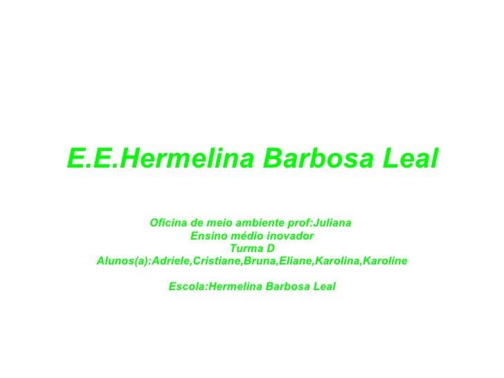 E.E.Hermelina Barbosa Leal Oficina de meio ambiente prof:Juliana  Ensino médio inovador Turma D Alunos(a):Adriele,Cristian...