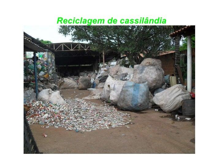 Reciclagem de cassilândia