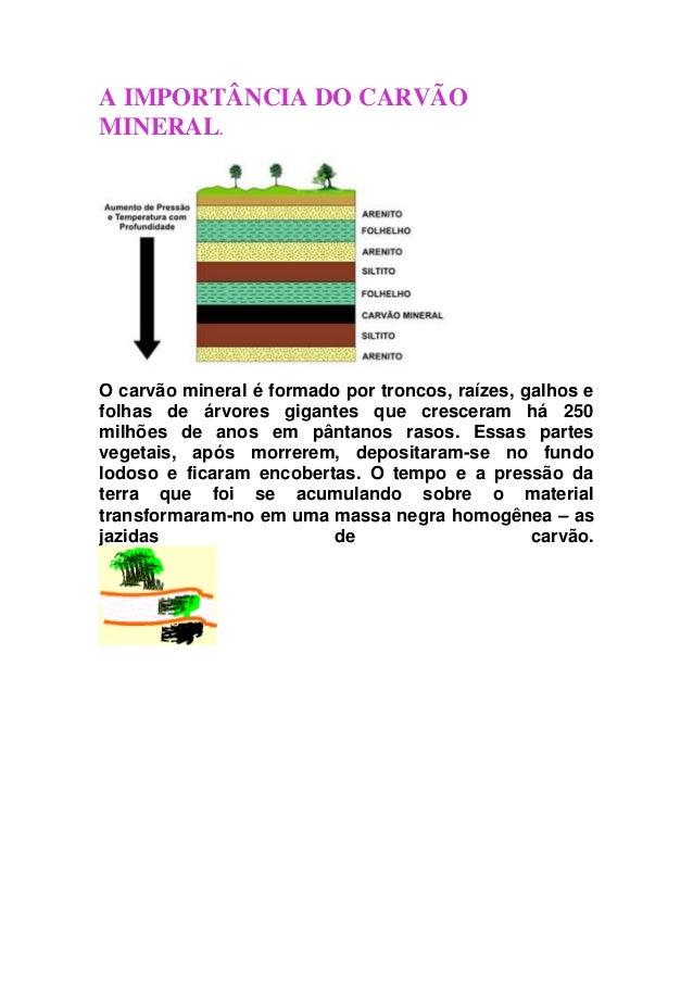 A IMPORTÂNCIA DO CARVÃO MINERAL.  O carvão mineral é formado por troncos, raízes, galhos e folhas de árvores gigantes que ...