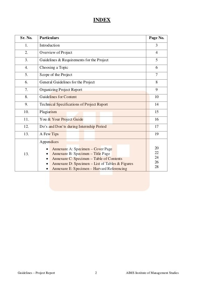 guidelines for internship report