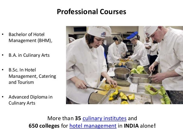 Hospitality and Tourism - Business Insights for Careers