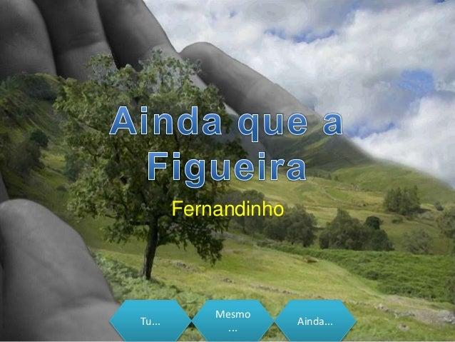 Tu... Mesmo ... Ainda... Fernandinho