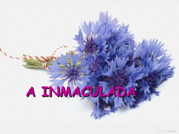 A INMACULADA