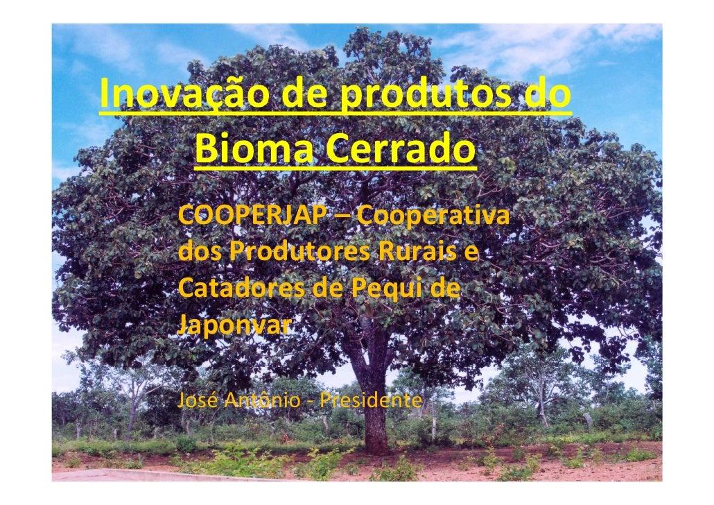 Inovação de produtos do      Bioma Cerrado    COOPERJAP – Cooperativa    dos Produtores Rurais e    Catadores de Pequi de ...