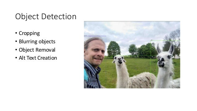 Object Detection • Cropping • Blurring objects • Object Removal • Alt Text Creation