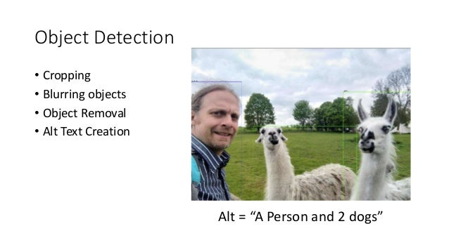 """Object Detection • Cropping • Blurring objects • Object Removal • Alt Text Creation Alt = """"A Person and 2 dogs"""""""