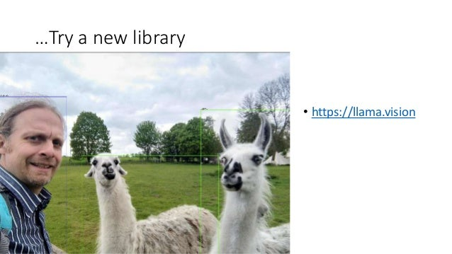 …Try a new library • https://llama.vision