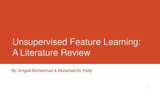 Unsupervised Feature Learning: A Literature Review By: Amgad Muhammad & Mohamed EL Fadly  1