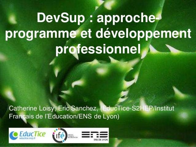 DevSup : approche- programme et développement professionnel Catherine Loisy, Eric Sanchez, (EducTice-S2HEP/Institut França...