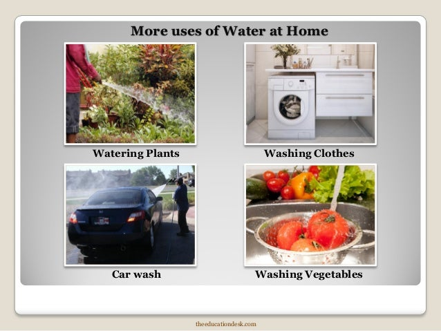 2nd Standard Air And Water Environmental Science Evs on Uses Of Plants Grade 2 Evs Science