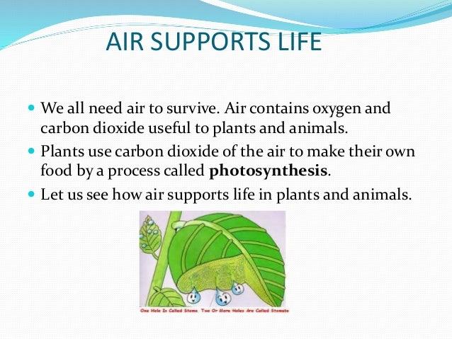 8. In Plants ...
