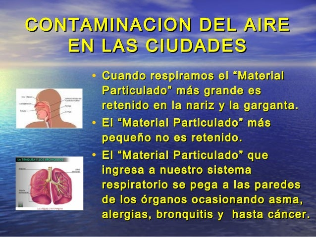 Aire contaminado en lima for Como purificar el aire contaminado
