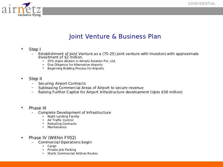 aviation business plan