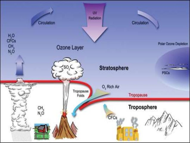 Environmental Pollution Essay – [Causes, Types, Effects] of Environmental Pollution