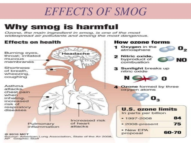 Effects Of Air Pollution On Human Health Essay Topic Ideas - image 2