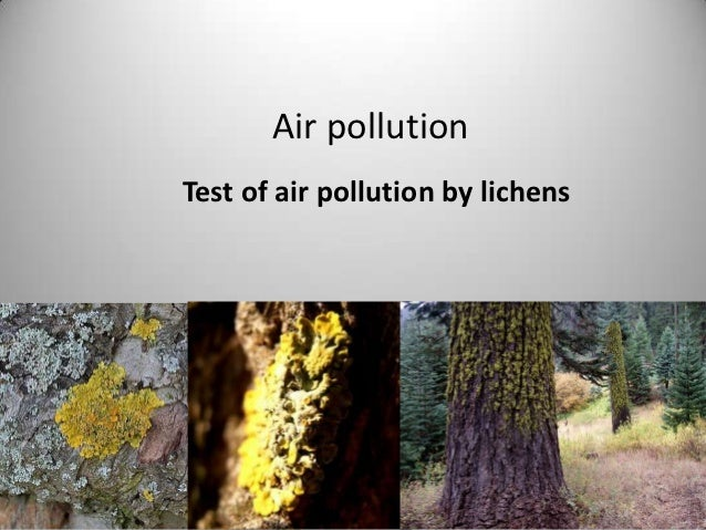 Air pollutionTest of air pollution by lichens