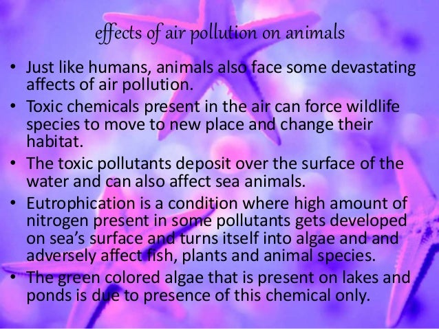 Air pollutionAir Pollution Effects On Animals And Plants