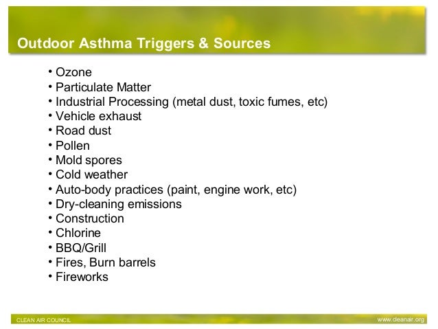 • Ozone • Particulate Matter • Industrial Processing (metal dust, toxic fumes, etc) • Vehicle exhaust • Road dust • Pollen...