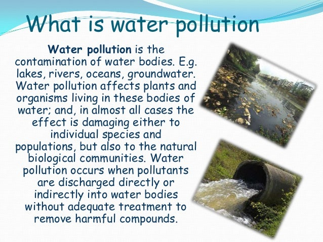 environmental water pollution essay Causes of water pollution 1) water pollution may be caused by the intentional or unintentional disposal of hazardous chemicals and materials into a body of water.