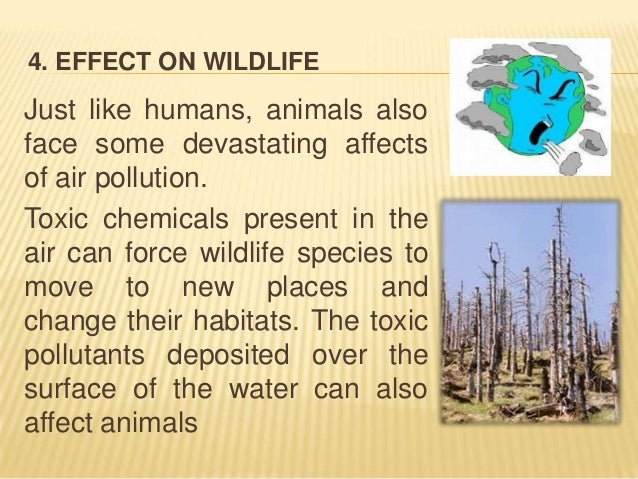 Air pollution presentationAir Pollution Effects On Animals And Plants