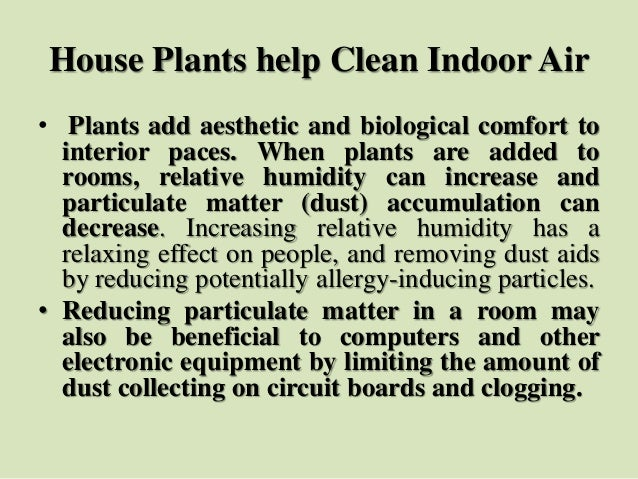 House Plants help Clean Indoor Air • Plants add aesthetic and biological comfort to interior paces. When plants are added ...
