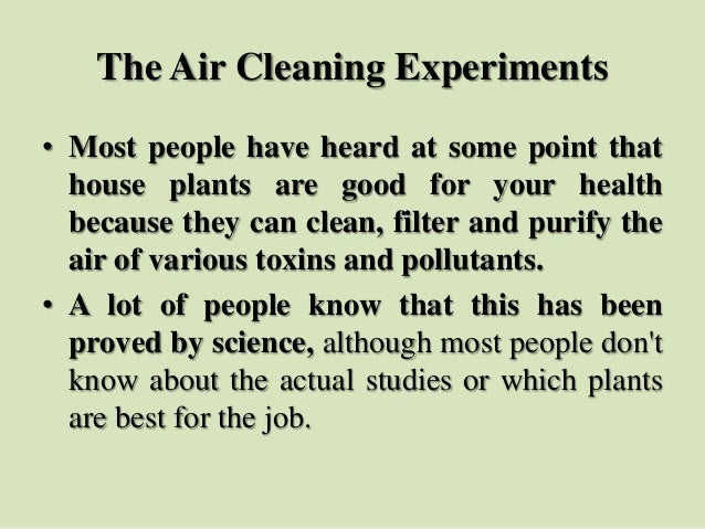 The Air Cleaning Experiments • Most people have heard at some point that house plants are good for your health because the...