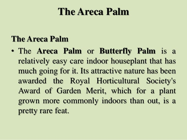 The Areca Palm The Areca Palm • The Areca Palm or Butterfly Palm is a relatively easy care indoor houseplant that has much...