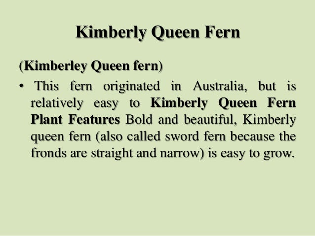 (Kimberley Queen fern) • This fern originated in Australia, but is relatively easy to Kimberly Queen Fern Plant Features B...