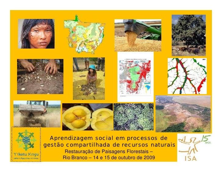 Aprendizagem social em processos de gestão compartilhada de recursos naturais       Restauração de Paisagens Florestais – ...