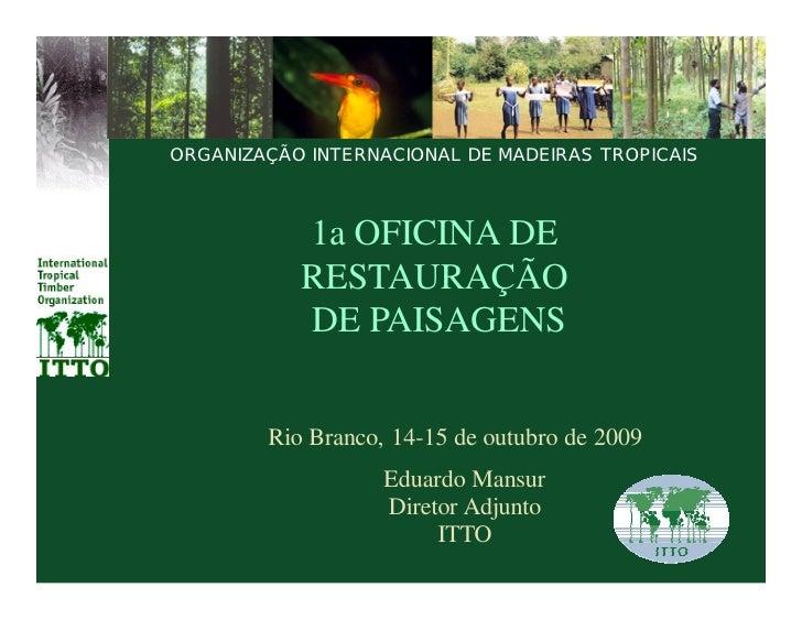ORGANIZAÇÃO INTERNACIONAL DE MADEIRAS TROPICAIS               1a OFICINA DE            RESTAURAÇÃO            DE PAISAGENS...