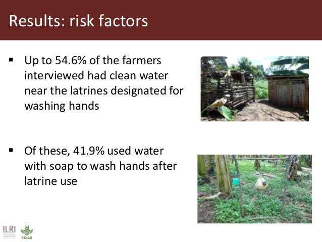 Results: risk factors  Up to 54.6% of the farmers interviewed had clean water near the latrines designated for washing ha...