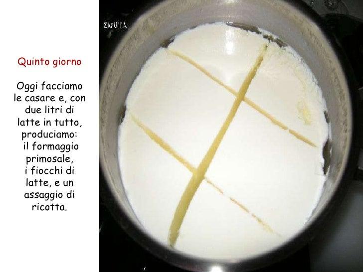 Quinto giorno Oggi facciamole casare e, con    due litri di latte in tutto,  produciamo:   il formaggio    primosale,    i...