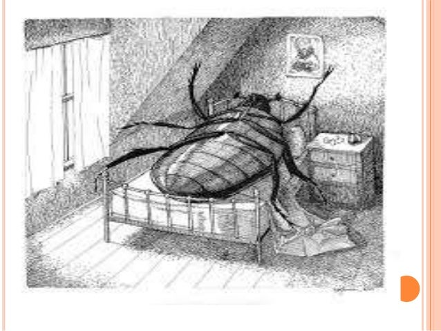 a picture of todays family in the metamorphosis by franz kafka The metamorphosis kafka, franz (translator: ian johnston)  travelling salesman—hung the picture which he had cut out of an illus-  family members became aware .