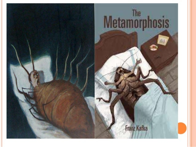 Metamorphosis By Kafka An Overview