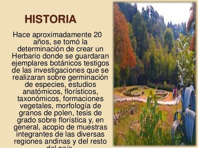 Jardin botanico paisajismo for Informacion sobre el jardin botanico