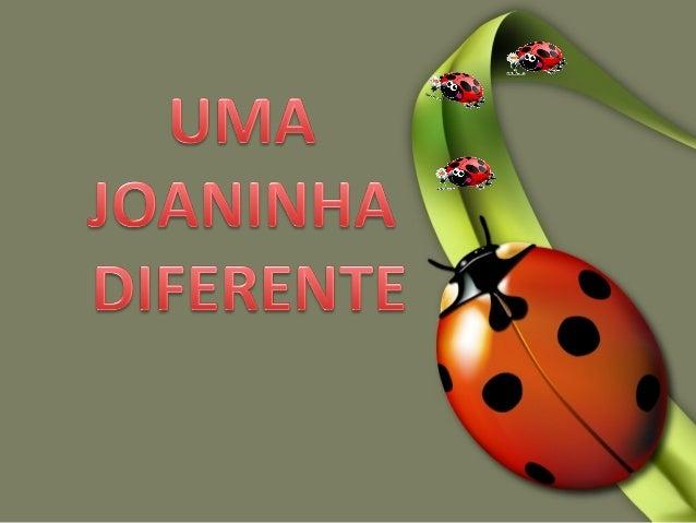 Uma joaninha diferente encontra uma formaUma joaninha diferente encontra uma forma de lutar contra o preconceito e ade lut...