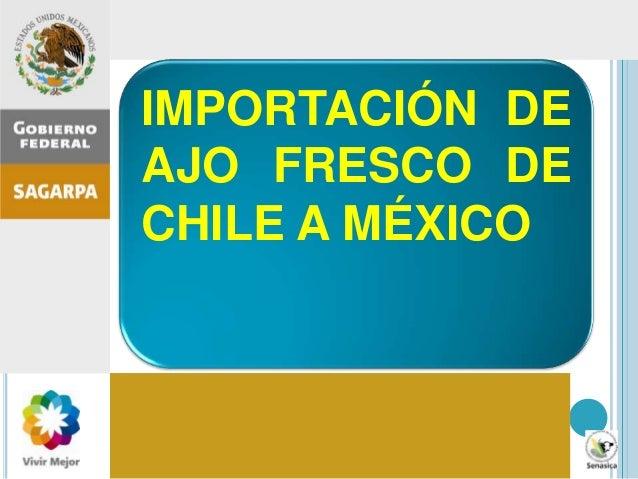 Inspección agropecuaria en México: importancia, procesos, errores comunes, recomendaciones IMPORTACIÓN DE AJO FRESCO DE CH...