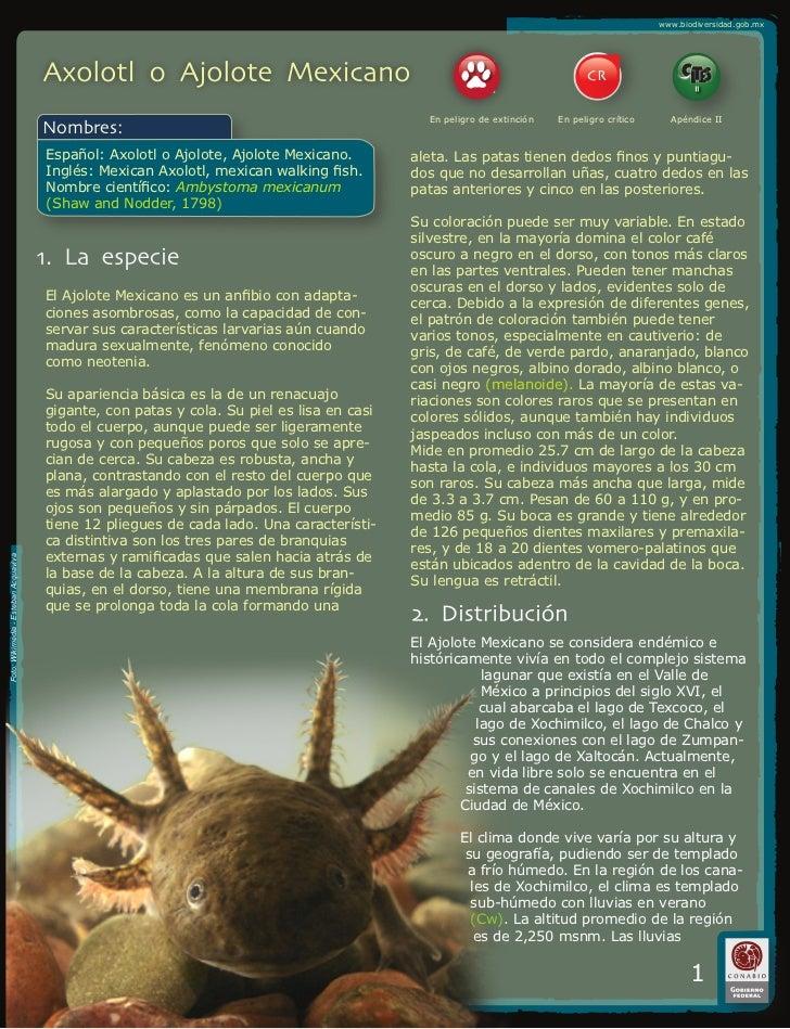 www.biodiversidad.gob.mx                                                                                                  ...