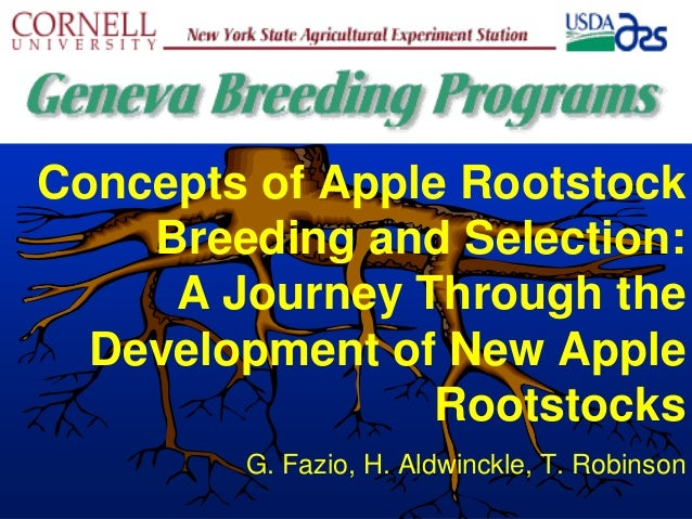 Concepts of Apple Rootstock Breeding and Selection: A Journey Through the Development of New Apple Rootstocks G. Fazio, H....