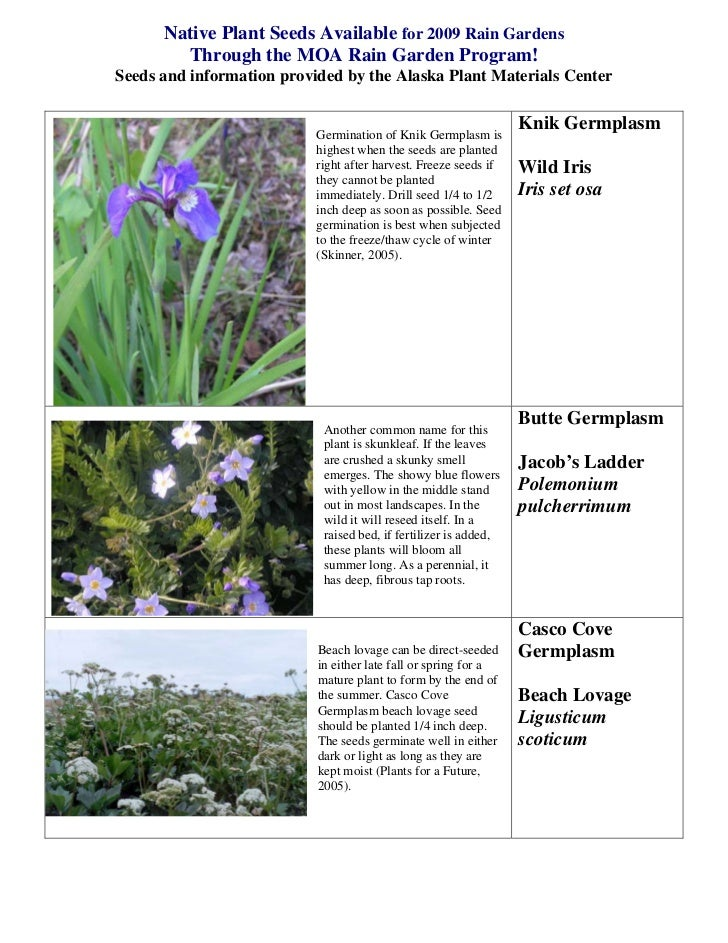 Native Plant Seeds Available for 2009 Rain Gardens        Through the MOA Rain Garden Program!Seeds and information provid...