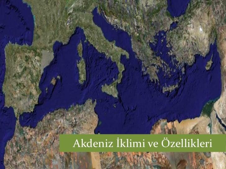 Akdeniz İklimi ve Özellikleri