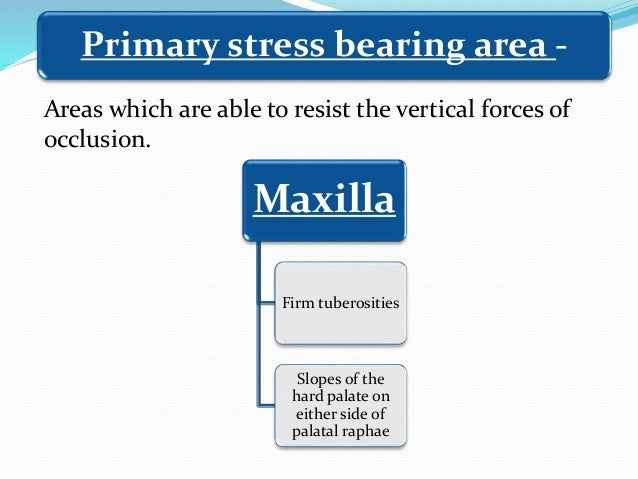 Maxilla Firm tuberosities Slopes of the hard palate on either side of palatal raphae Primary stress bearing area - Areas w...