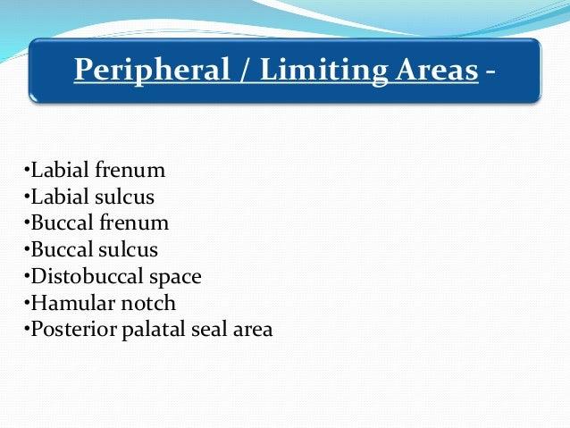 •Labial frenum •Labial sulcus •Buccal frenum •Buccal sulcus •Distobuccal space •Hamular notch •Posterior palatal seal area...